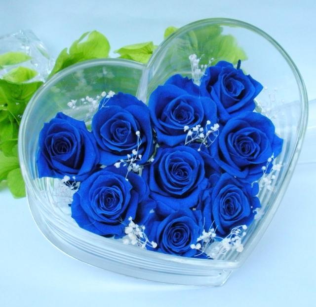 Hoa hồng màu xanh ngọc bích tượng trưng cho tình yêu vĩnh hằng